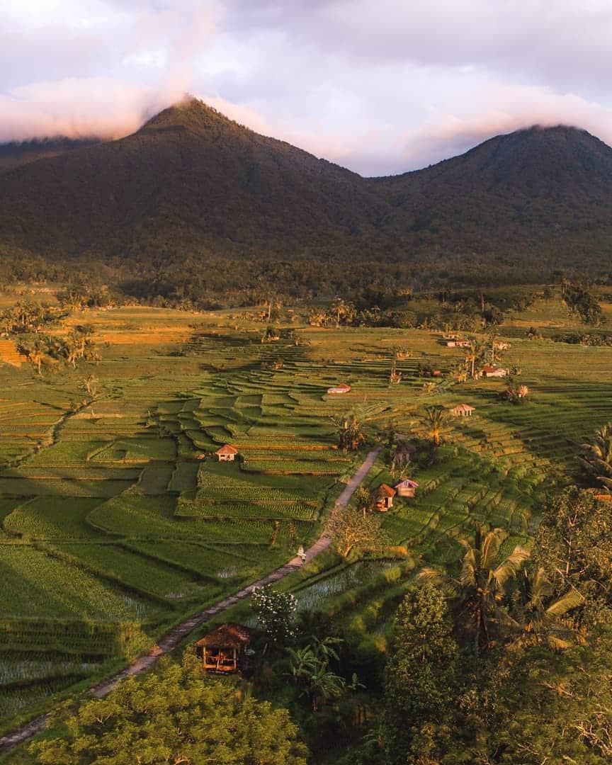 Bali-best-sunrise-spots-jatiluweh-ricefields