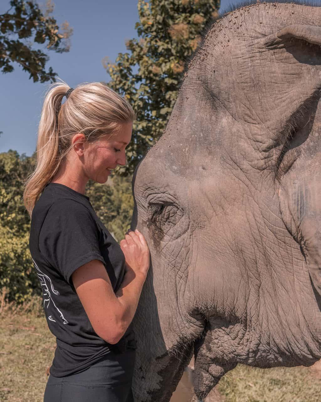 Elephant-Nature-park-Chiang-Mai-must-do