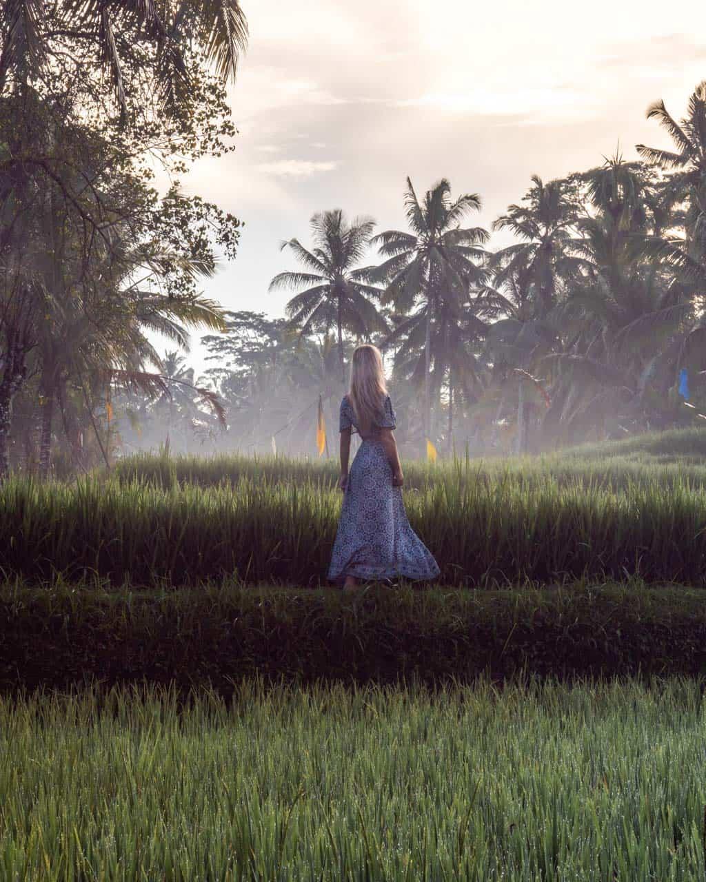 tegalalang-ricefield-bali-instagram-spot
