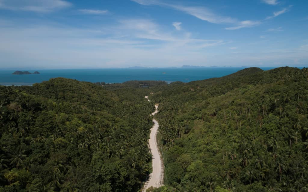 koh-phangan-road-jungle