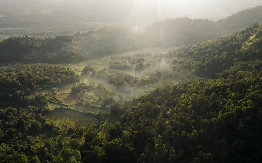 aarunya-nature-resort-kandy-drone-view-fog