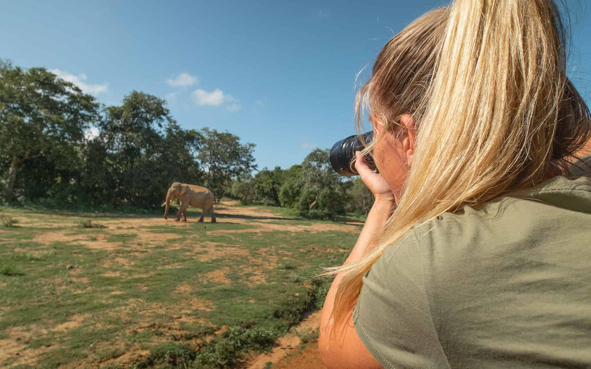 safari-sri-lanka-elephant-photographing