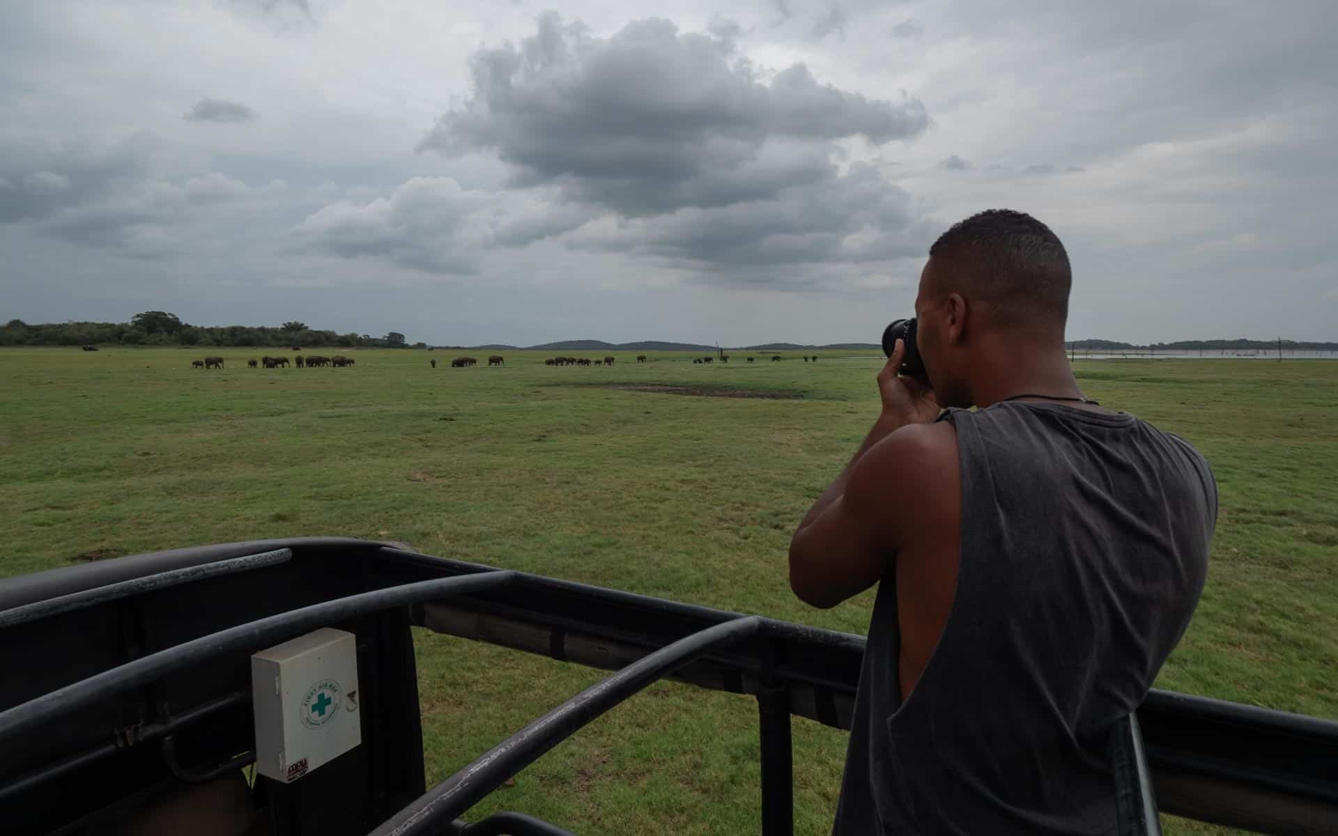 safari-sri-lanka-kaudulla-herd-elephants-photographing