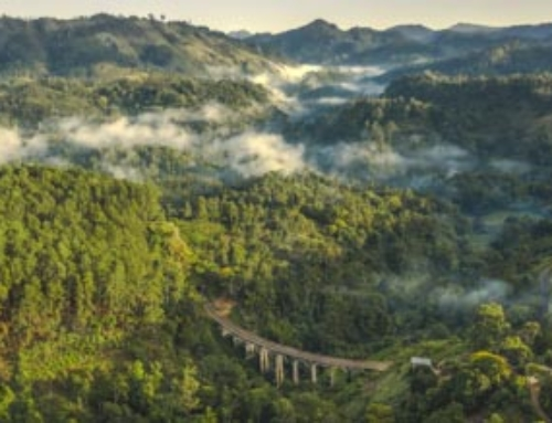NINE ARCH BRIDGE ELLA SRI LANKA – The Complete Guide