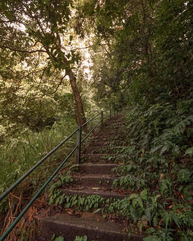 laxapana-falls-sri-lanka-stairs