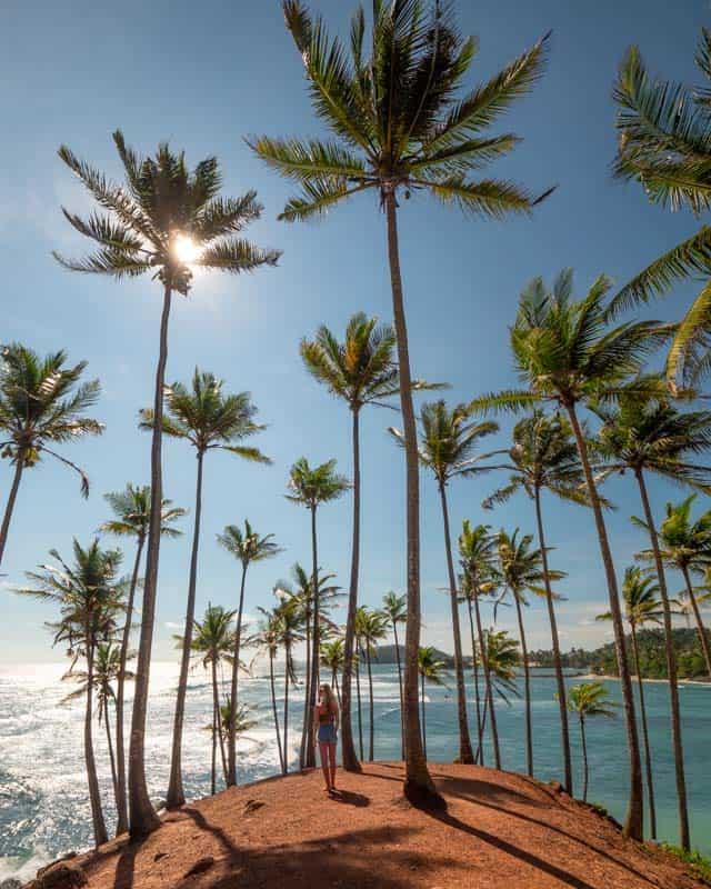 coconut-tree-hill-mirissa-sri-lanka
