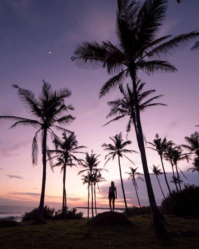 hiriketiya-dikwella-beach-sunset-palmtrees