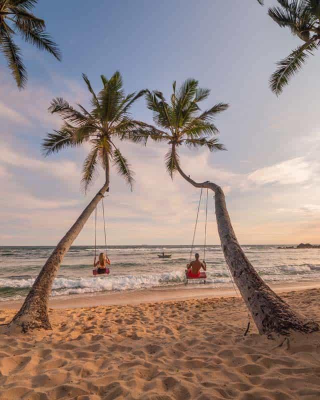 hiriketiya-dikwella-palmtree-swing