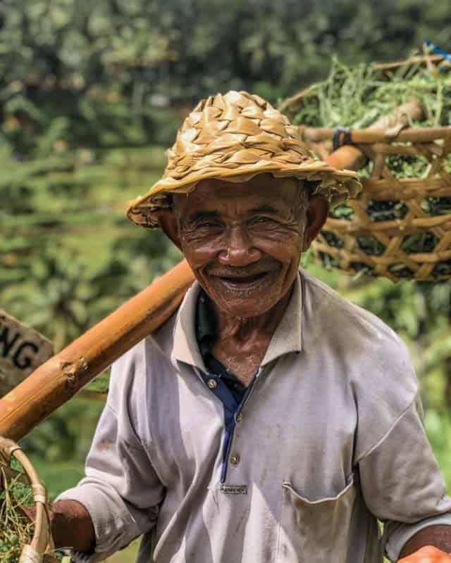 portrait-rice-farmer