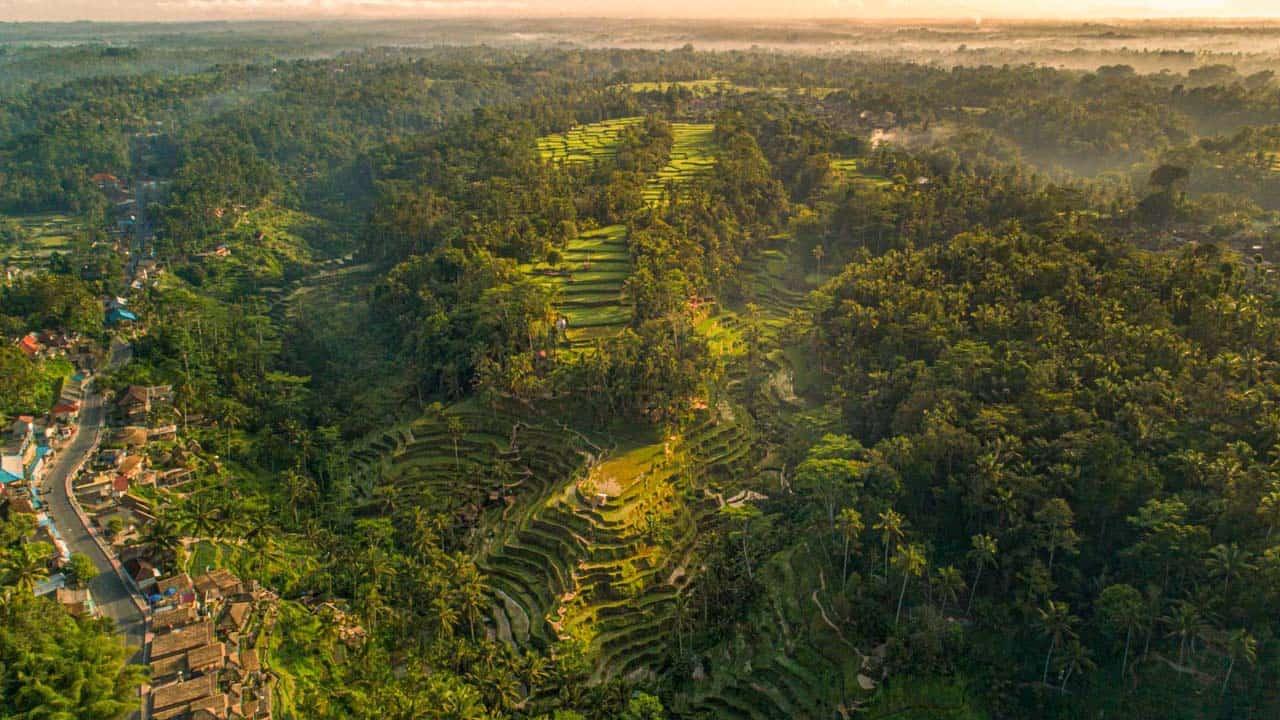 tegalalang-village