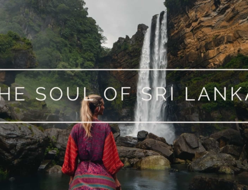 The Soul of Sri Lanka l Travel documentary film 4K