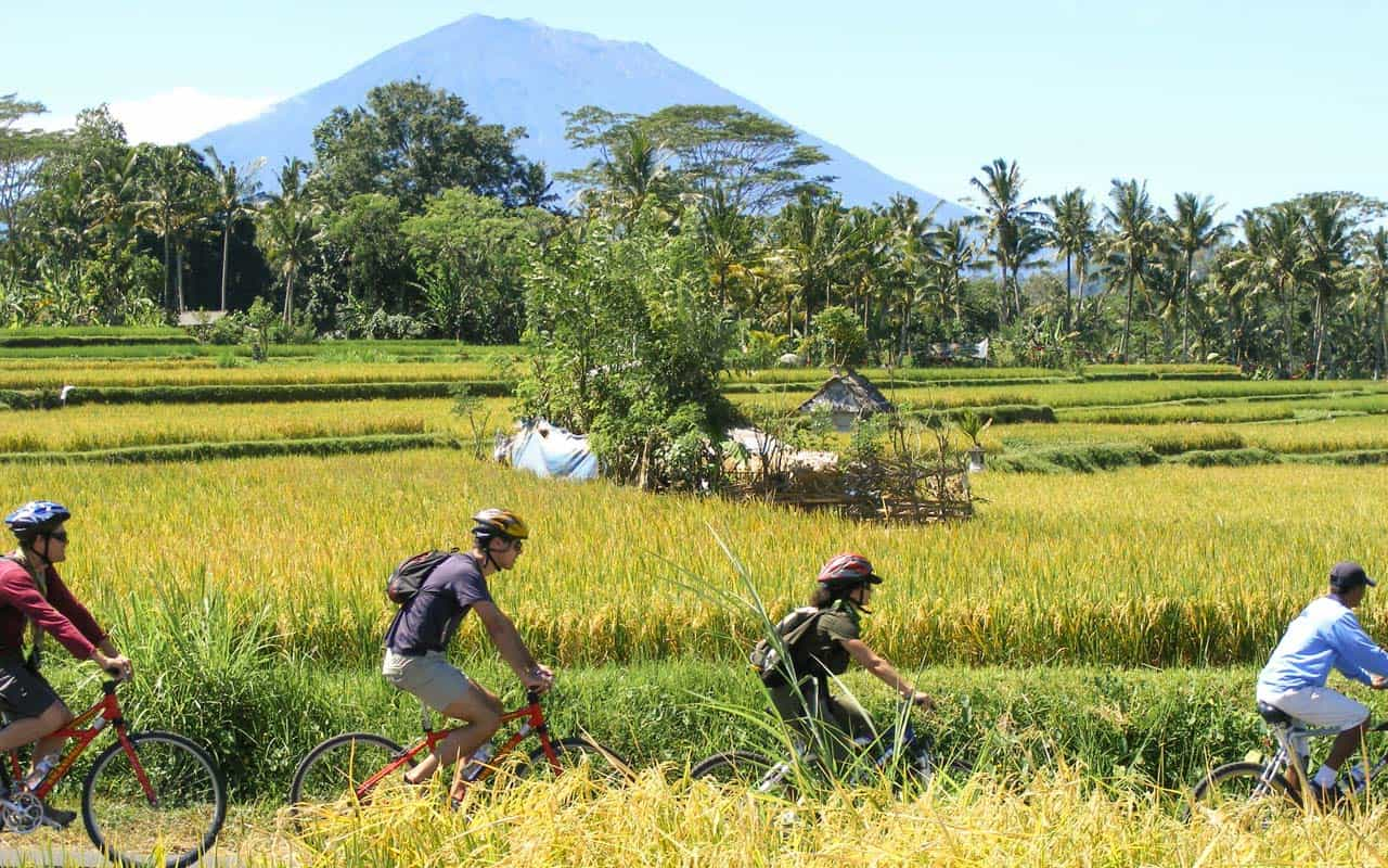 cycling-ricefields-volcano