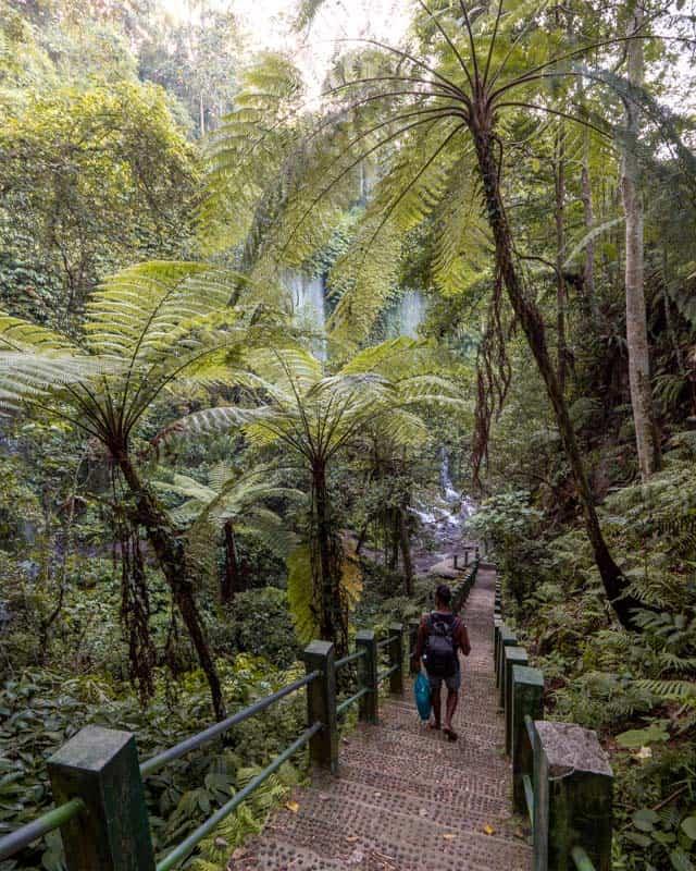 path-Benang-Stokel-Kelambu