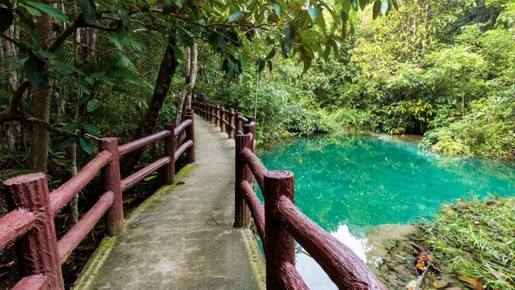 emerald-pool-krabi-path