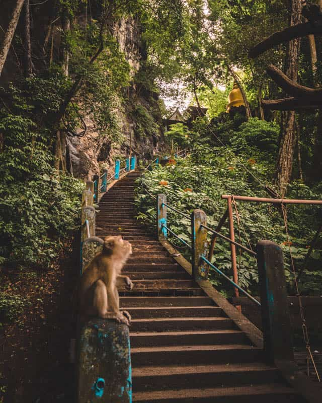 stairs-tiger-cave-temple