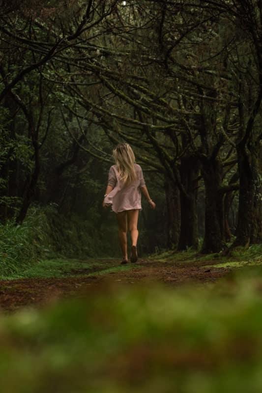 Queimadas-Forest-Park-1
