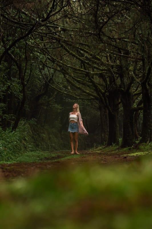Queimadas-Forest-Park-2