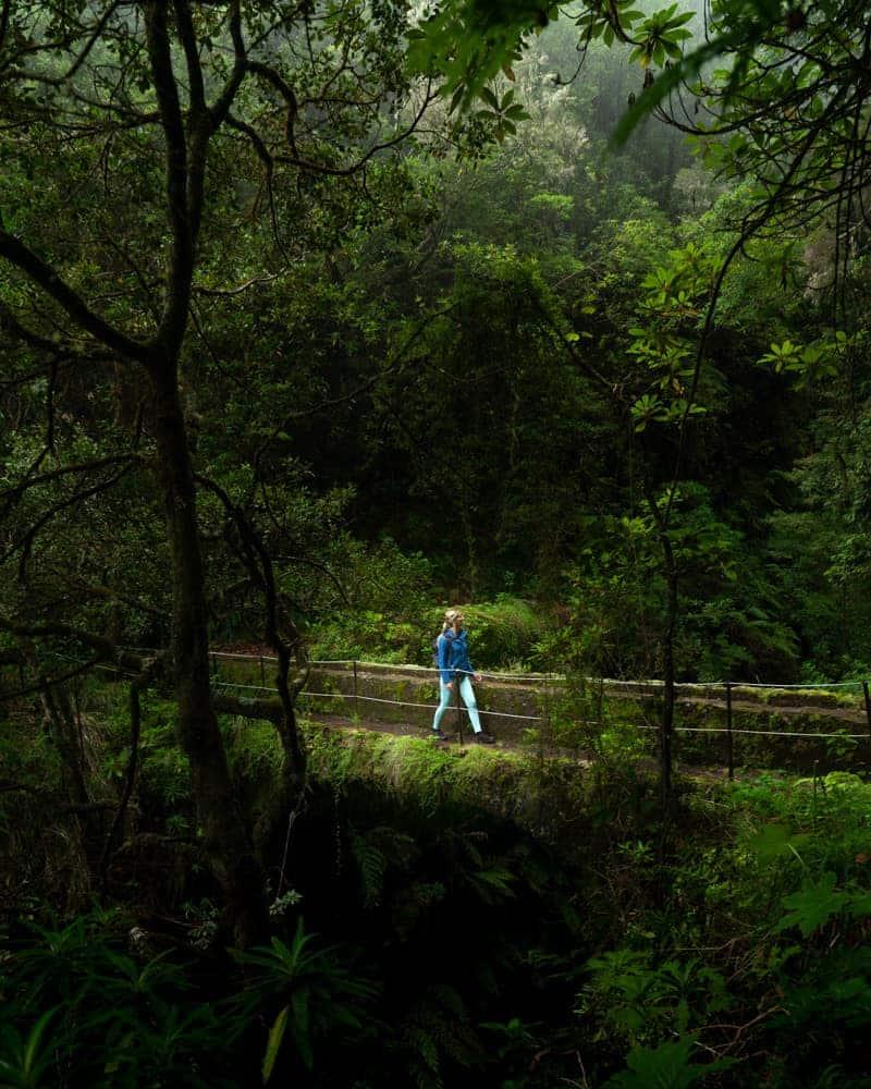 caldeirao-verde-bridge